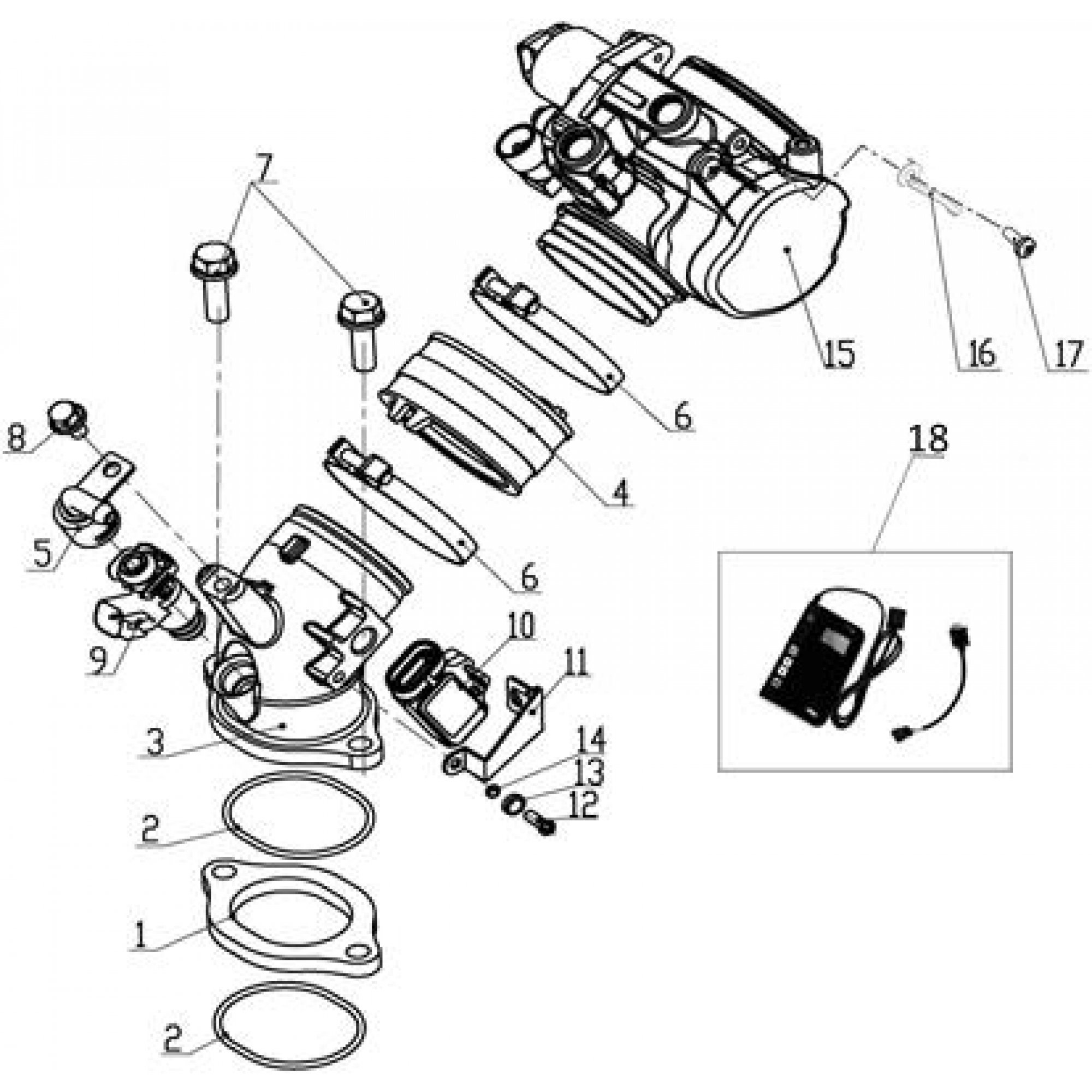 FUEL INJECTION ASSY